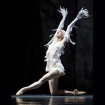 """""""LAC"""" par les Ballets de Monte-Carlo"""
