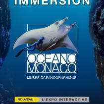 "Exposition interactive ""Immersion"""